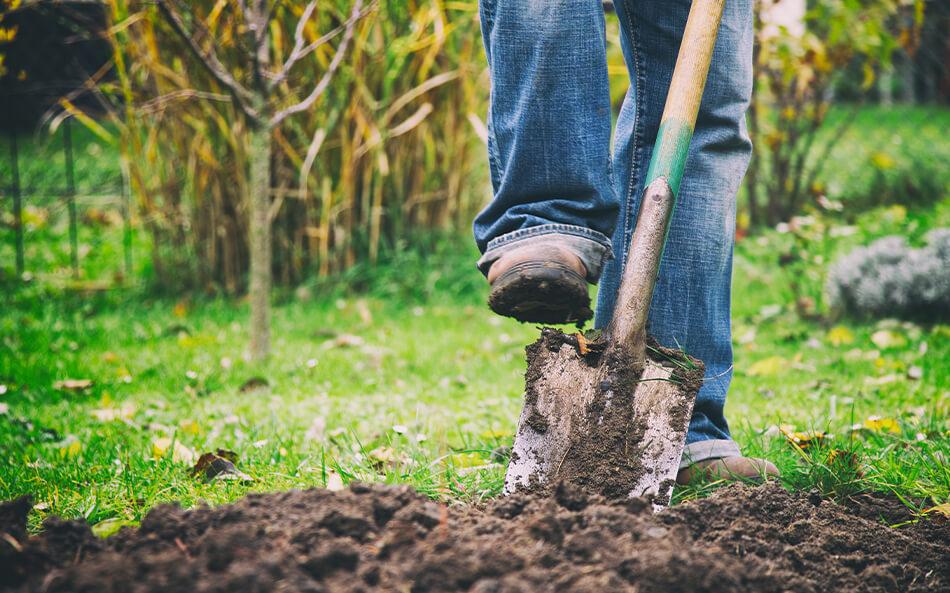 Beplantning på Sjælland | Din lokale anlægsgartner | Teigen ApS